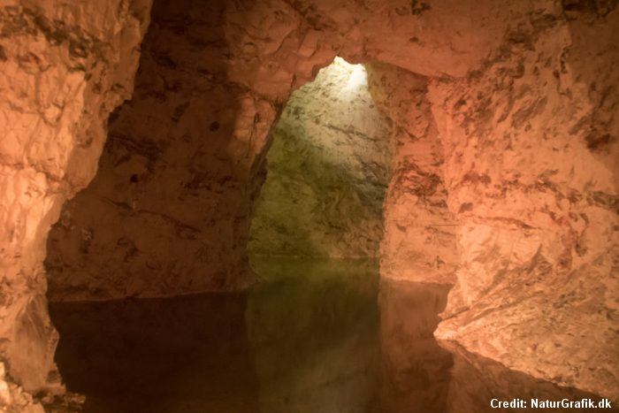 Visit the worlds largest limestone mine – Wild About Denmark